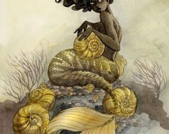 Sea Snail Mermaid - 11x14 print