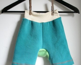 wool shorties - wool shorts for cloth diapers - medium 6 to 18 months hand dyed merino wool shorty - rebourne diaper cover