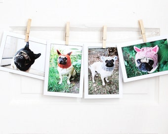 Pug Creature Greeting Card Collection - Set of 4 - Pug Card - Pug Cards - Cute Cards - All Occasion Card - Pug Greeting Card Set