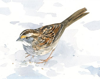 Sparrow art print, bird watercolor painting