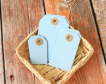 BABY BLUE Reinforced Luggage Tag