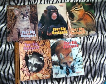 MY BIG BACKYARD Nature Magazines 1988 Five Issues - for Children age 3 to 5, Vintage Wildlife Magazine with Fun Activities, Animal, Animals