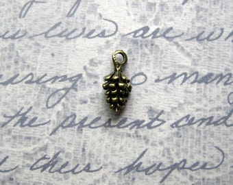 10 Cute pine cone Charms in bronze tone- C2194