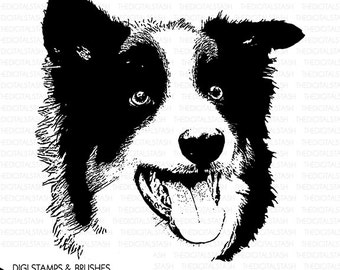 Border Collie Dog - Digital Stamp and Brush - INSTANT DOWNLOAD - for Cards, Scrapbooking, Journaling, Collage, Invites, Crafts and More