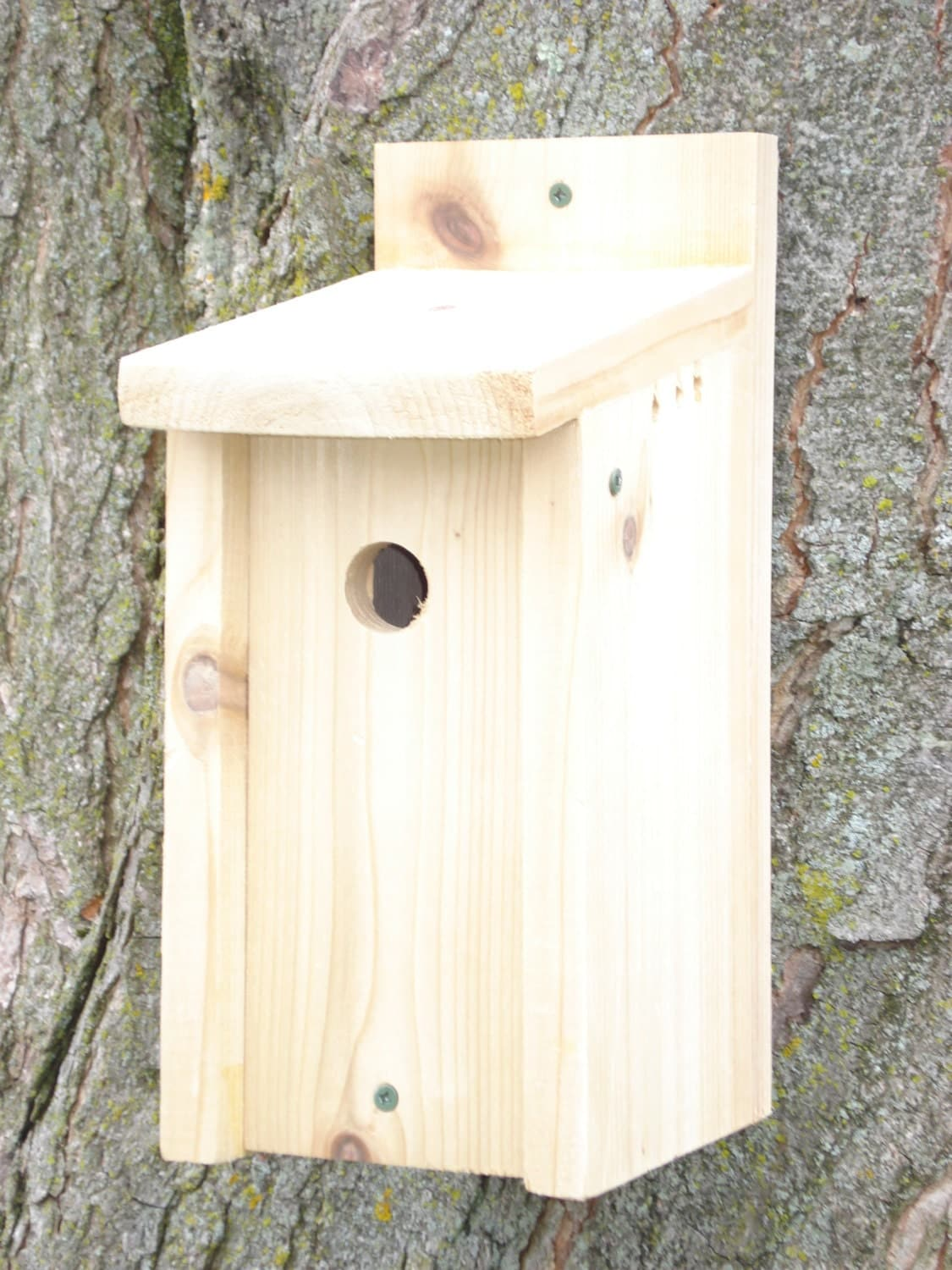 Species specific size birdhouses by thewildsongshop on etsy for Different types of birdhouses