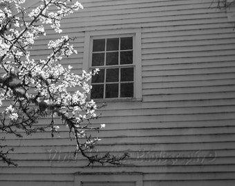 Farmhouse Photo, Window Photograph, Black And White Print, Rustic Art, Country Home Decor, Rustic Building Photo, Architecture, Farm Art