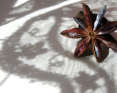 Anise ring