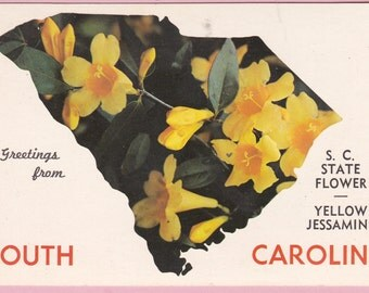"Ca. 1950's ""South Carolina"" Big Letter Topographical Picture Postcard - 2225"
