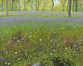 Bluebell Woods - Limited Edition Print