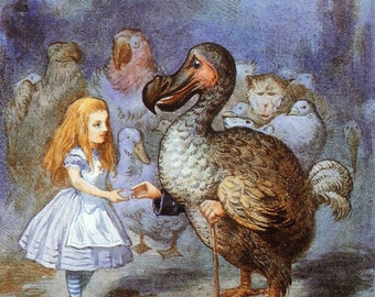 1865 ALICE in WONDERLAND and the Dodo John TENNIEL Colour Print Ideal for Framing