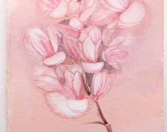 Pink Magnolias watercolor paintings. Floral illustration. Watercolor paintings original only. Light coral, peach painting. Small watercolors