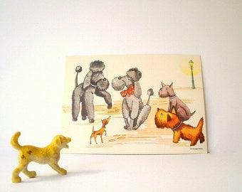 Vintage Dog Post Card, Unused Very Sweet Illustration.