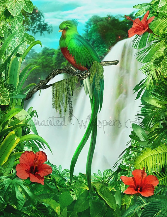 Green parrot painting - photo#25