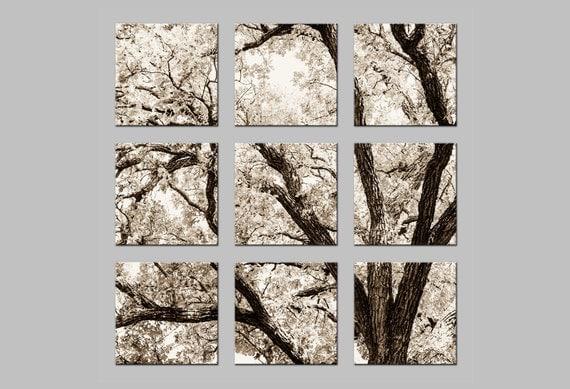 FREE SHIPPING. Oak Tree. Sepia Photo Split. Nine Metal Prints. Nature Photography by OneFrameStories.