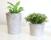 Cement flowerpot - vase - Large