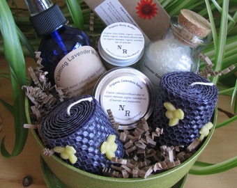 Organic Bath and Body Gift Basket ('planted' in a avocado colored eco-planter).  Ships USPS Priority!