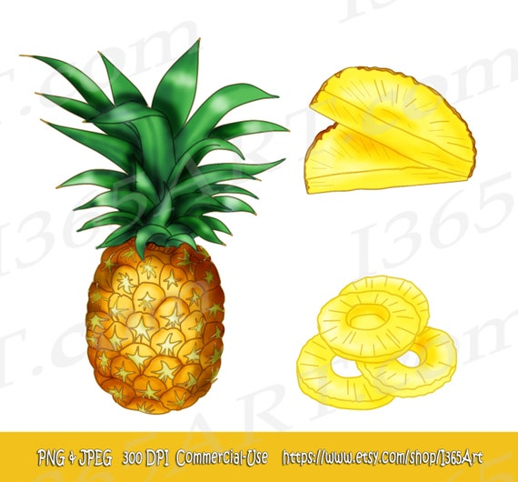 Pineapple Tropical Delicious Fruit Clipart Hand Drawn by ...