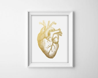 Human Heart, Faux Gold Foil,  Anatomical Print, Home Decor, Macabre, Human Anatomy, Medical Print, Doctor Office, 8x10 Digital Print