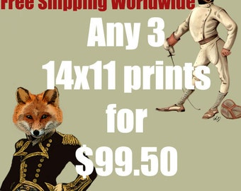 Any 3 14x11 prints for 99.50Dollars - FREE SHIPPING WORLDWIDE
