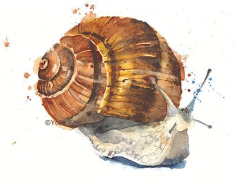 Original watercolor snail wall decor 7x10""