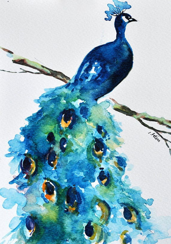 ORIGINAL Watercolor Painting Peacock Painting Turquoise