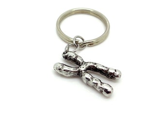 Pewter Chromosome Keychain, Genetic Science Keyring Biology Genome DNA