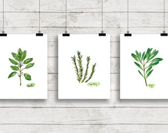 Watercolor Herbs Print Set No.1, Botanical Prints, Giclee, Herb Prints, Kitchen Art, Botanical Print Set, Herbs, Culinary Herbs, Herb Art