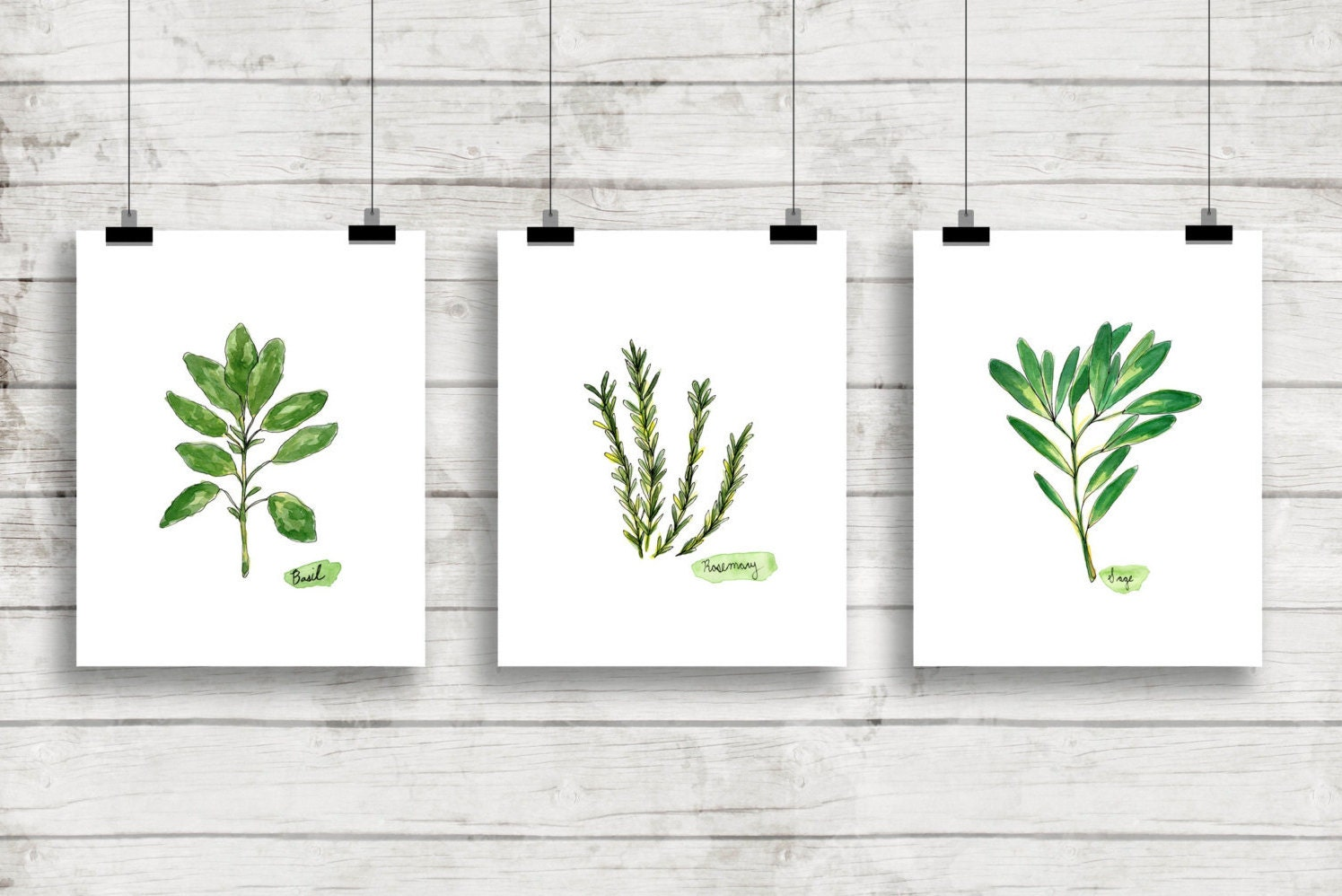 watercolor herbs print set no1 botanical prints giclee With kitchen colors with white cabinets with botanical wall art sets