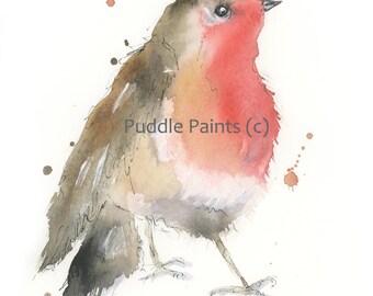 Robin redbreast watercolour painting print, Puddle Paints print, robin print, robin painting, red robin, British bird, Christmas gift