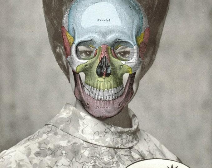 Anatomical Skull Art Collage, Human Skull Anatomy Artwork