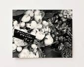 Black and White Paris Photography - Peony Photograph - French Romantic Floral Print - Paris Valentines Flower Paris Decor  Feminine Wall Art