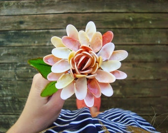 Sunrise Inspired Coquina Shell Flower