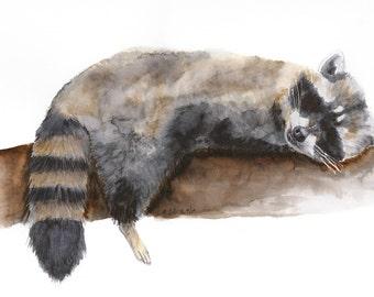Raccoon, Kids Wall Art, Woodland Nursery, Animal Art, Raccoon Art, Woodland Animals, Nursery Art, Raccoon Nursery, Brown, Gray - 11x14