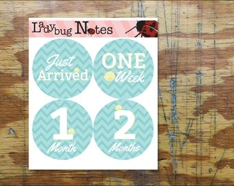 Little Birdie Chevron Onesie Stickers. // Baby Month Stickers. // Monthly Photo Accessory Stickers. // Easy Peel Baby Stickers. //