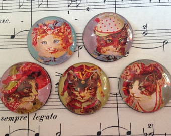 Set of 5 Glass Magnets, Fridge Magnets, Cats in Hats!