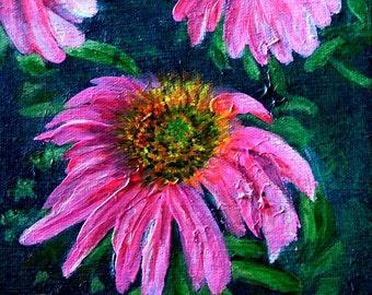Echinacea #1 (Coneflower)