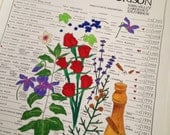 Art Print: Cathy Corison Napa Valley Cabernet 25 Vintage Vertical