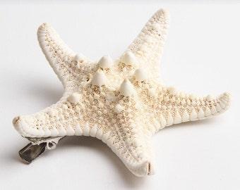 Natural Starfish Hair Clip cute beach accessory