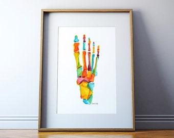 Bones of the Foot in Summer Colors - Foot Anatomy Print - Podiatry Print - Foot Watercolor - Bones of the Foot Art