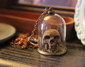 Skull in a Dome