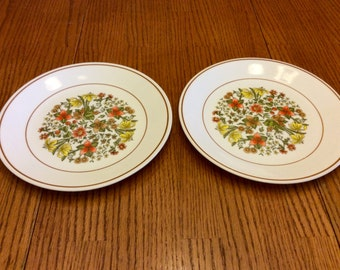 Vintage Corelle Corning Indian Summer Luncheon/Salad/Desert/ Plate, set of 2