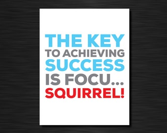 The key to achieving success is focu...squirrel! | Funny greeting cards