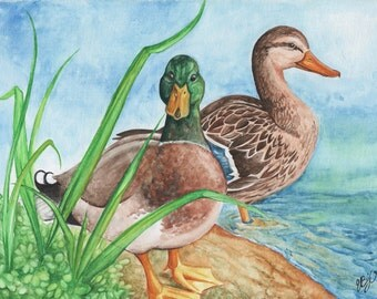 Mallard Ducks   9x12 Original Watercolor