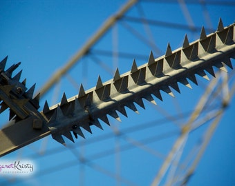 Spikes - power lines sky electricity photography