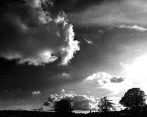 Wilderness- Original Fine Art Print - Landscape Art- Film Noir - Limited Edition - Stylish Modern Prints  - Black and White