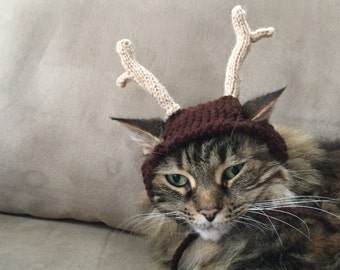 Cat dog antler hat christmas reindeer
