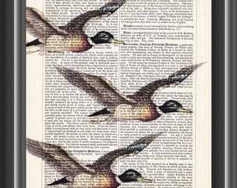 ducks in flight flying vintage dictionary art print home decor wall art bird print #156