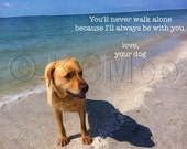 Photography, Dogs, Beach, Instant Digital Download, Decorative Wall Art, Home Decor, Poster, Kid's Room Art