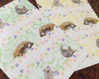 Beautiful Cats and Dogs Wrapping paper