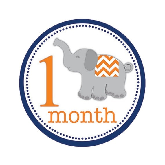 Baby Month Stickers First Year Stickers Monthly Milestone